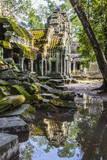 Reflections at Ta Prohm Temple (Rajavihara) Fotografie-Druck von Michael Nolan