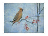 Waxwing (Detail), 2013 Giclee Print by Ruth Addinall