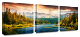 Into the Wild 3-Piece Canvas Set Gallery Wrapped Canvas Set by Revolver Ocelot