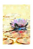 Water Lily Giclee Print by Scott J. Davis