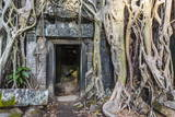 Jungle Overgrowth at Ta Prohm Temple (Rajavihara) Photographic Print by Michael Nolan