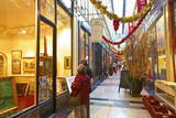 Passage Des Panoramas, Paris, France, Europe Photographic Print by Neil Farrin
