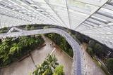 Canopy Walkway, Gardens by the Bay, Cloud Forest,Botanic Garden, Singapore, Southeast Asia, Asia Photographic Print by Christian Kober