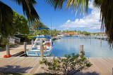 Harbour, Jolly Harbour, St. Mary, Antigua, Leeward Islands, West Indies, Caribbean, Central America Photographic Print by Frank Fell