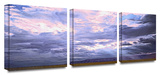 Echo Cliffs  3-Piece Canvas Set Gallery Wrapped Canvas Set by Dean Uhlinger