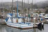 Marina in Pillar Point Harbor, Half Moon Bay, California, United States of America, North America Stampa fotografica di Cummins, Richard