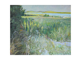 Towards Youghal, Ballymacoda Giclee Print by John Erskine