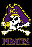 NCAA East Carolina Pirates 2-Sided Banner with Pole Sleeve Flag