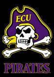 NCAA East Carolina Pirates 2-Sided Banner with Pole Sleeve Flag