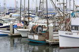 Marina in Pillar Point Harbor, Half Moon Bay, California, United States of America, North America Photographic Print by Richard Cummins