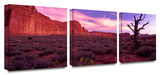 High desert dawn 3-Piece Canvas Set Gallery Wrapped Canvas Set by Dean Uhlinger