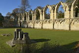 Ruins of St. Mary's Benedictine Abbey Photographic Print by Peter Richardson