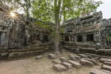 Jungle Surrounded Ruins at Ta Prohm Temple (Rajavihara) Photographic Print by Michael Nolan