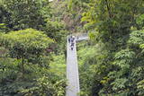 Canopy Walk, Southern Ridges, Singapore, Southeast Asia, Asia Photographic Print by Christian Kober