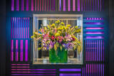 W Hotel's Flower Arrangement in Lobby Photographic Print by Richard Nowitz