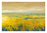 Hot Summer Day I Giclee Print by Tim O'toole