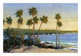 Distant Shore II Giclee Print by Tim O'toole