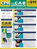 Adult CPR Poster Print
