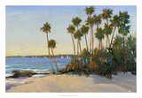 Distant Shore I Giclee Print by Tim O'toole