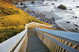 Seashore Stairwell Photographic Print by Dennis Frates