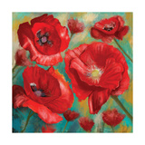 Red Poppies Giclee Print by Anthony Christou