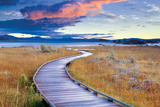 Pathway to Mono Lake Photographic Print by Dennis Frates