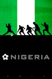 Brazil 2014 - Nigeria Photo