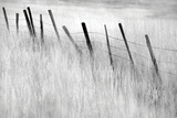 Fence Post Photographic Print by Dennis Frates