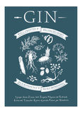 Gin Art by  Monorail Studio