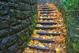 Cobblestone Foliage Photographic Print by Dennis Frates