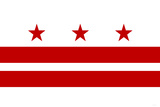Washington DC Flag Poster Posters