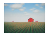 Barn Rows Prints by Sharon France