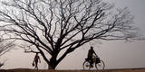 People Pass Some Barren Trees in the Outskirts of Guwahati City, Northeast India Photographic Print