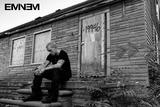 Eminem - LP2 Affiche