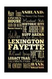 Lexington-Fayette I Giclee Print by Helen Chen