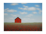 Poppy Barn Prints by Sharon France