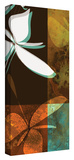 Espresso Floral II Gallery-Wrapped Canvas Stretched Canvas Print