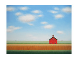 Large Barn Rows Print by Sharon France