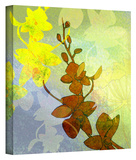Orchid Shadow Gallery-Wrapped Canvas Stretched Canvas Print
