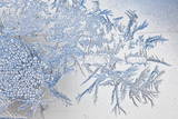 Frost Crystals Pictured on a Window in Zurich Photographic Print by Alessandro Della Bella