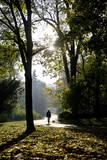 A Woman Walks Her Dogs in a Park Photographic Print by Wojciech Pacewicz