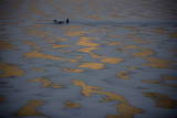 Men Cut Ice Blocks Off the Frozen Songhe River in Harbin, Northern China's Heilongjian Province Photographic Print by Diego Azubel
