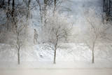 Men Walk Through a Snow-And-Ice Covered Park in Minsk Photographic Print by Tatyana Zenkovich