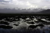 A General View of the Wet Grasslands Beside the Karakul Lake with The Photographic Print by Michael Reynolds