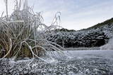 A Frozen Pond Is Pictured at the Snowed-In Bois De Finges Pine Wood Near Pfyn Photographic Print by Olivier Maire