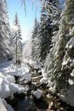 Winter Weather in Tatra Mountains in Zakopane Region Photographic Print by Grzegorz Momot