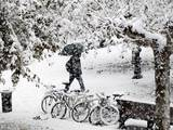 A Man Walks under a Heavy Snowfall at the Castillo Square in Pamplona Photographic Print by Jesus Diges