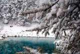 Multi-Color Lake Covered in Snow at the Jiuzhaigou Scenic Reserve in China's Sichuan Province Photographic Print by Diego Azubel