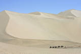 Chinese Tourists Ride Camels in Desert in Dunhuang, Gansu Province, North Eastern China Photographic Print by Oliver Weiken