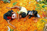 Children Pick Up the Unspoilt Marigold Flowers to Make Garlands from a Waste Flowers Dumping Site Photographic Print